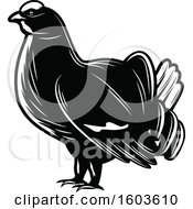 Clipart Of A Western Capercaillie Grouse In Black And White Royalty Free Vector Illustration by Vector Tradition SM