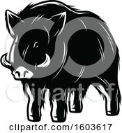 Clipart Of A Wild Boar In Black And White Royalty Free Vector Illustration