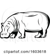 Clipart Of A Hippopotamus In Black And White Royalty Free Vector Illustration by Vector Tradition SM