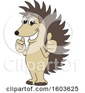 Hedgehog School Mascot Character Holding Two Thumbs Up