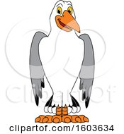 Clipart Of A Seagull School Mascot Character Royalty Free Vector Illustration
