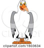 Seagull School Mascot Character