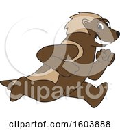 Clipart Of A Wolverine School Mascot Character Running Royalty Free Vector Illustration