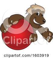 Clipart Of A Wolverine School Mascot Character Grabbing A Cricket Ball Royalty Free Vector Illustration