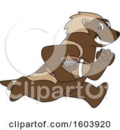 Clipart Of A Wolverine School Mascot Character Running With A Football Royalty Free Vector Illustration