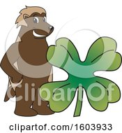 Clipart Of A Wolverine School Mascot Character With A St Patricks Day Clover Royalty Free Vector Illustration