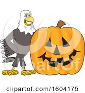 Clipart Of A Bald Eagle School Mascot Character With A Halloween Pumpkin Royalty Free Vector Illustration