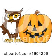 Brown and White Owl School Mascot Character with a Halloween Pumpkin