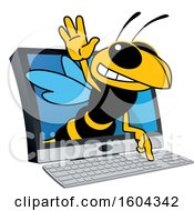 Clipart Of A Hornet Or Yellow Jacket School Mascot Character Emerging From A Computer Screen Royalty Free Vector Illustration