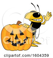 Clipart Of A Hornet Or Yellow Jacket School Mascot Character With A Halloween Pumpkin Royalty Free Vector Illustration