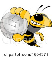 Hornet Or Yellow Jacket School Mascot Character Grabbing A Volleyball