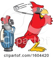 Clipart Of A Red Cardinal Bird School Mascot Character Golfing Royalty Free Vector Illustration by Toons4Biz