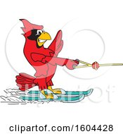 Clipart Of A Red Cardinal Bird School Mascot Character Water Skiing Royalty Free Vector Illustration by Toons4Biz