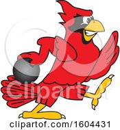 Clipart Of A Red Cardinal Bird School Mascot Character Bowling Royalty Free Vector Illustration