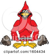 Clipart Of A Red Cardinal Bird School Mascot Character Lifting A Barbell Royalty Free Vector Illustration by Toons4Biz