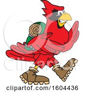 Clipart Of A Red Cardinal Bird School Mascot Character Hiking Royalty Free Vector Illustration by Toons4Biz