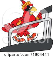 Clipart Of A Red Cardinal Bird School Mascot Character Running On A Treadmill Royalty Free Vector Illustration
