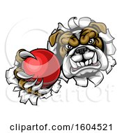 Poster, Art Print Of Tough Bulldog Monster Sports Mascot Holding Out A Cricket Ball In One Clawed Paw And Breaking Through A Wall