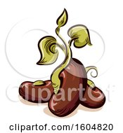Clipart Of A Sprouting Seed Royalty Free Vector Illustration