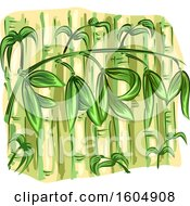 Clipart Of Bamboo Stalks Royalty Free Vector Illustration