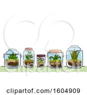 Clipart Of A Garden Of Glass Terrariums And Plants Royalty Free Vector Illustration