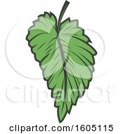 Clipart Of A Green Beer Hop Leaf Royalty Free Vector Illustration by Vector Tradition SM
