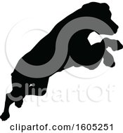 Black Silhouetted Dog Jumping