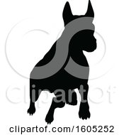 Black Silhouetted Dog Running