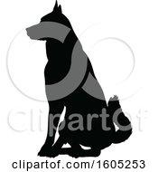 Black Silhouetted German Shepherd Dog Sitting