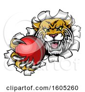 Clipart Of A Vicious Wildcat Mascot Breaking Through A Wall With A Cricket Ball Royalty Free Vector Illustration by AtStockIllustration