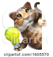 Clipart Of A 3d Tabby Kitty Cat Holding A Light Bulb On A White Background Royalty Free Illustration by Julos