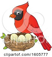 Clipart Of A Red Cardinal Bird By A Nest Royalty Free Vector Illustration