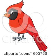 Clipart Of A Red Cardinal Bird Royalty Free Vector Illustration