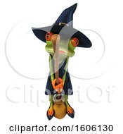 Clipart Of A 3d Green Female Springer Frog Witch Flying On A Broom On A White Background Royalty Free Illustration by Julos