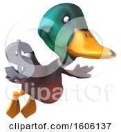 3d Mallard Drake Duck Holding A Dollar Sign On A White Background
