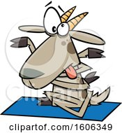 Clipart Of A Cartoon Tangled Yoga Goat Royalty Free Vector Illustration