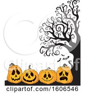 Group Of Halloween Jackolantern Pumpkins By A Bare Tree