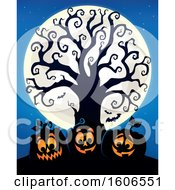 Group Of Silhouetted Halloween Jackolantern Pumpkins Under A Bare Tree With A Full Moon