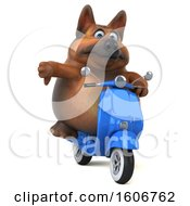 Clipart Of A 3d German Shepherd Dog Riding A Scooter On A White Background Royalty Free Illustration by Julos
