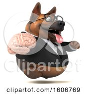 Clipart Of A 3d Business German Shepherd Dog Holding A Brain On A White Background Royalty Free Illustration by Julos