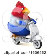 Clipart Of A 3d Chubby French Chicken Riding A Scooter On A White Background Royalty Free Illustration by Julos
