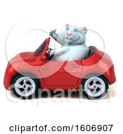 Clipart Of A 3d White Kitty Cat Driving A Convertible Car On A White Background Royalty Free Illustration