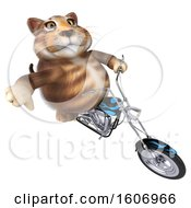 3d Tabby Kitty Cat Biker Riding A Chopper Motorcycle On A White Background