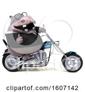 Clipart Of A 3d Business Hippo Biker Riding A Chopper Motorcycle On A White Background Royalty Free Illustration