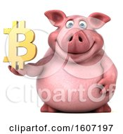 3d Chubby Pig Holding A Bitcoin Symbol On A White Background