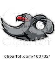 Red And Gray Eagle Mascot Handball Player