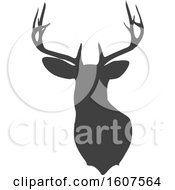 Clipart Of A Gray Silhouetted Buck Deer Head Royalty Free Vector Illustration