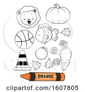 Color Orange Secondary Coloring Book Illustration