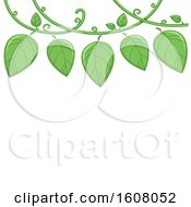 Vine Border Illustration