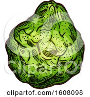 Clipart Of A Sketched Bergamot Royalty Free Vector Illustration